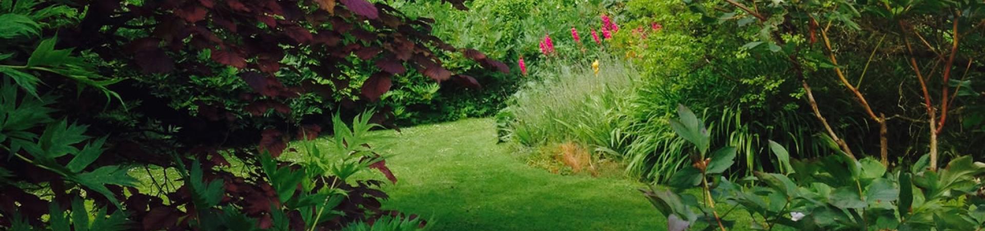 A l'EHPAD Ty Marhic, on cultive son jardin. Et ça fait tellement de bien !